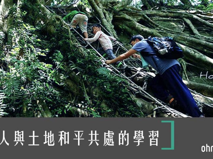 [台東親子遊]森林野趣體驗!攀樹走繩、種樹~鸞山森林博物館
