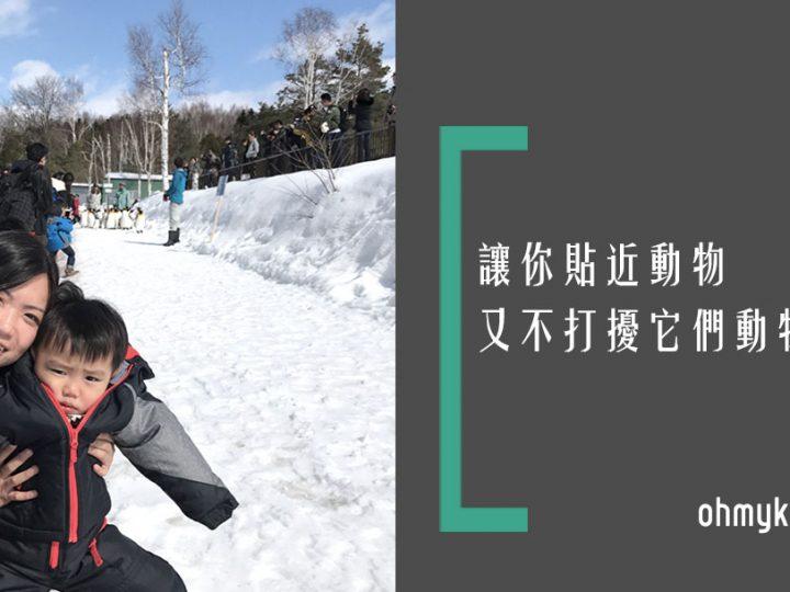 【親子旅遊】北海道冬季限定超人氣行程